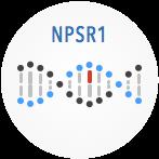 NSRP1
