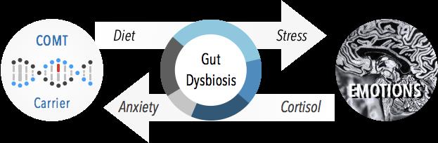 Dysbiosis IIII